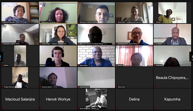 Group Pic ToT Peace Webinar 2